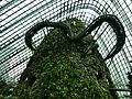 Singapore 17 - panoramio.jpg