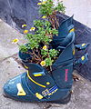 Ski boots as flower pots.jpg