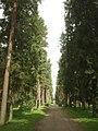Skogskyrkogården 019.JPG