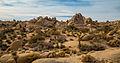 Skull Rock Trail (15833095630).jpg
