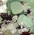 Smithsonite-Hemimorphite-122779.jpg
