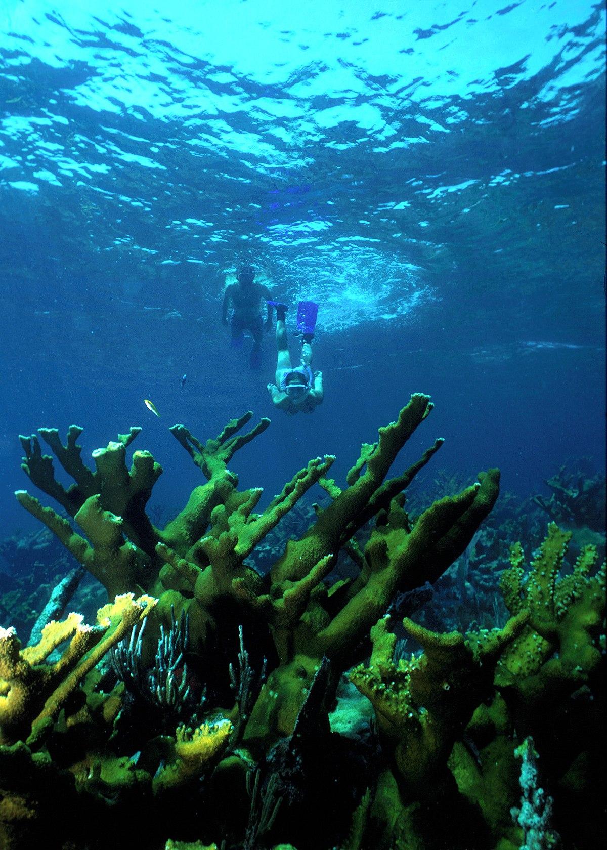 Miami To Treasure Island