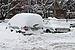 Snow cars 2012 G1.jpg