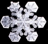 Snowflake4.png