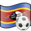 Soccer Swaziland.png