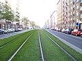 Sokolovská, zatravněná tramvajová trať, od Balabenky.jpg