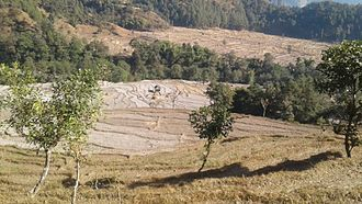 Solukhumbu District - Salyan Fedi ricefield, Solukhumbu