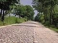 Sommerweg zw Braak&Siek Stormarn P8120018.JPG