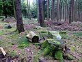 Soonwald – Nähe Hochsteinchen - panoramio.jpg