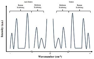 Brillouin Spectroscopy - An illustration of an example Brillouin and Raman spectrum. In practice the distinction between the two depends on which frequencies we choose to sample. Brillouin scattering generally lies within the GHz frequency regime.