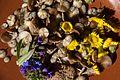 Spring treats (8715738905).jpg