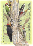 Stamp-russia2018-woodpeckers-block.png