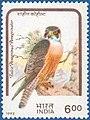 Stamp of India - 1992 - Colnect 164335 - Peregrine Falcon Falco peregrinus ssp perequinator.jpeg