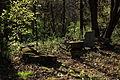 Stan nagrobków na żydowskim cmentarzu w Wieliczce (Grabówkach).JPG