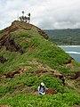 Starr-050405-5694-Solanum americanum-habitat with Kim-Alau-Maui (24716419256).jpg