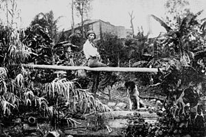 Clement Lindley Wragge - Wragge in his garden at Capemba, Taringa, circa 1902