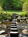 Stepping Stones 2 (2501310993).jpg