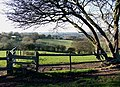 Stile and Fields, Gospel End, Staffordshire - geograph.org.uk - 616325.jpg