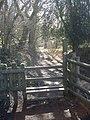 Stile leading into News Wood - geograph.org.uk - 907716.jpg
