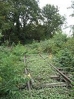 Stillgelegte Bahngleise, nahe Bahnhof Ahrensfelde 2.jpg