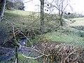 Stream Northeast of Moel Truan - geograph.org.uk - 356292.jpg