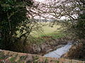 Stream Tilley Lane Nr Herstmonceux East Sussex - geograph.org.uk - 117806.jpg