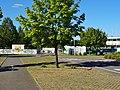 Struppener Straße, Pirna DSC06644.jpg