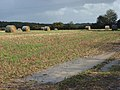 Stubble and bales near Bytham Farm - geograph.org.uk - 265645.jpg