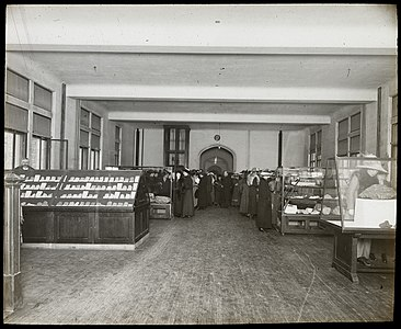 Students in temporary exhibition of minerals, Victoria Memorial Museum Building, 1912