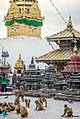 Stupa of Swyambhunath Temple.jpg