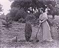 Suffragette Helen Watts 1911 digging.jpg