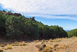 Sulayr trail in Bubión, Sierra Nevada National Park (DSCF5162).jpg