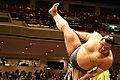 Sumo wrestler in Japan 片山信次 (2878963194).jpg