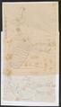 Sus scrofa domestica - skelet - 1700-1880 - Print - Iconographia Zoologica - Special Collections University of Amsterdam - UBA01 IZ21900155.tif