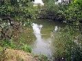 Svislač river in southeastern Minsk - 13.jpg