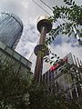 Sydney tower from below.JPG