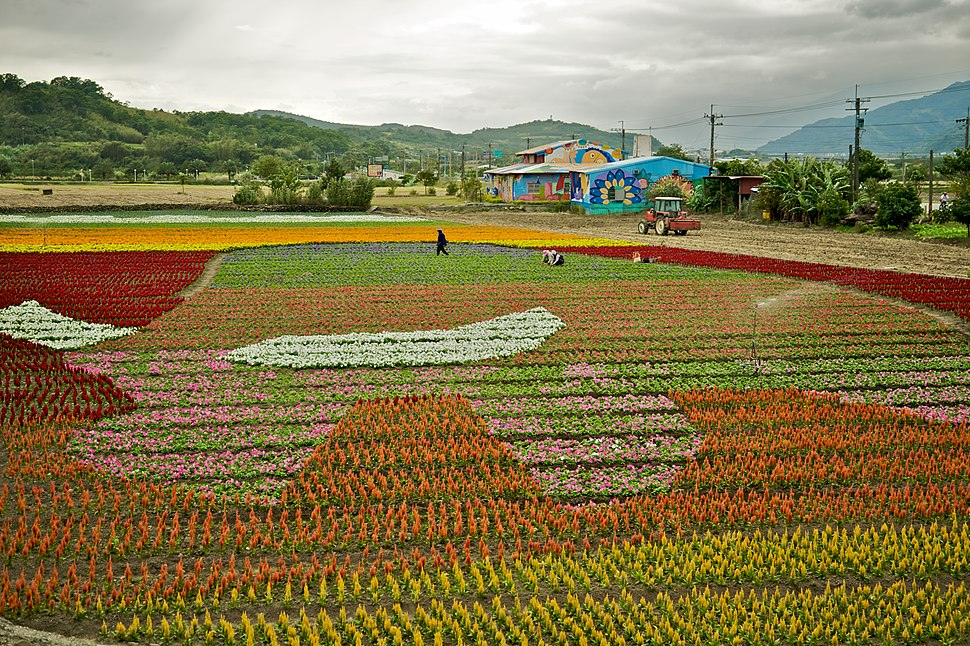Taiwan 2009 FuLi Town Paint with Flowers FRD 8103