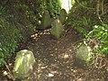 Tank traps, near Northam - geograph.org.uk - 1359514.jpg
