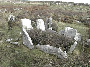 Court cairn - The remains of the chamber of Teergonean court cairn