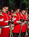 The Governor General's Band of the Ceremonial Guard.jpg