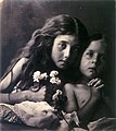 The Red and White Roses, by Julia Margaret Cameron.jpg
