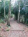 The Sandstone Trail - geograph.org.uk - 1561420.jpg