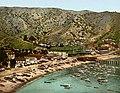 The beach at Avalon, Santa Catalina Island, California, 1903.jpg