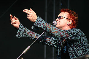 Wayne Hussey - Hussey performing at the M'era Luna Festival in 2004