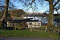 Throstle Nest - geograph.org.uk - 119636.jpg
