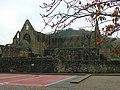 Tintern Abbey - geograph.org.uk - 1034372.jpg