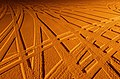 Tire tracks in snow under sodium light 4.jpg