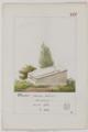Tombeaux de personnages marquants enterrés dans les cimetières de Paris - 166 - Dheur.png