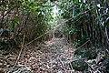 Traces of Toriuchi village in Hachijo-Kojima Island 03.jpg
