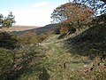 Track along Dobb Edge - geograph.org.uk - 253314.jpg